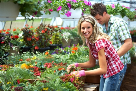 greenhouse and ecology: Gardening people. Stock Photo
