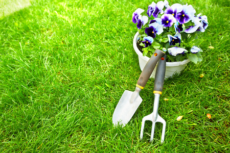 garden landscaping: Gardening tools on green grass. Stock Photo