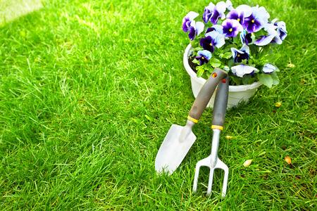garden: Gardening tools on green grass. Stock Photo