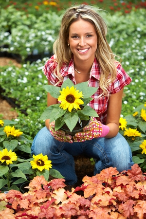 foliar: Woman planting sunflower.