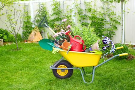a garden: Gardening tools.