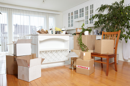 furniture store: Moving boxes in new house.
