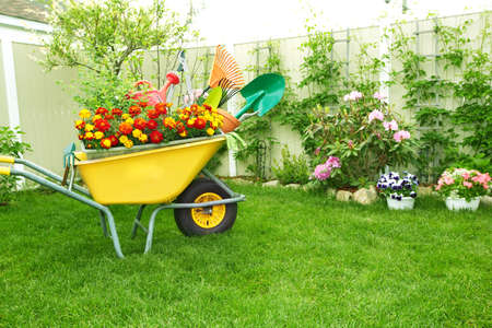 wheelbarrow: Gardening tools.