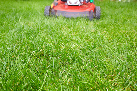 grassplot: Lawn mower. Stock Photo