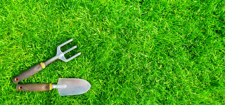 grassplot: Gardening tools on green grass. Stock Photo
