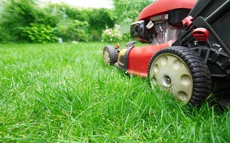 lawn mower: Lawn mower. Stock Photo