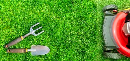 grass cutting: Lawn mower cutting green grass in backyard.Gardening background.