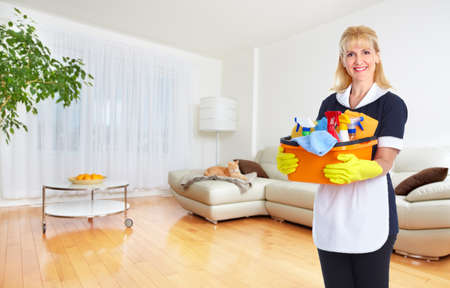 cleaning background: Maid woman with tools. House cleaning service concept. Stock Photo