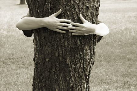 clasping: preserve the nature Stock Photo