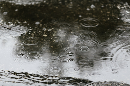 rippling: Rain drops rippling in a puddle, selective focus Stock Photo