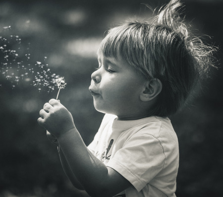 Little boy blowin dandelions in black and white photo