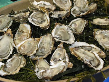 clams: Fresh oysters