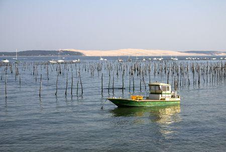 oyster farm in Arcachon Bay ,France