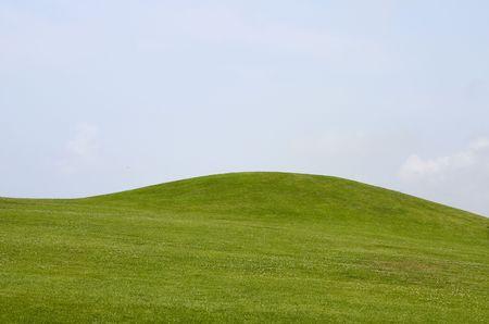 Green field in Gironde, France