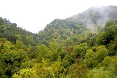 Autumn forest in Rupit, Barcelona, Catalonia, Spain photo