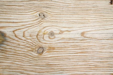 Close-up of a veined wood with knots Stock Photo