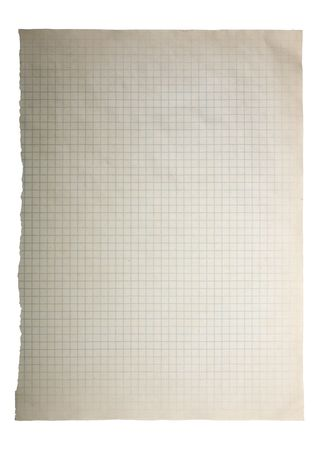 looseleaf: Torn squared sheet of paper, isolated on white