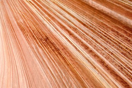 USA. Arizona. Paria Canyon. Vermilion Cliffs. North Coyote Buttes. The Wave. photo