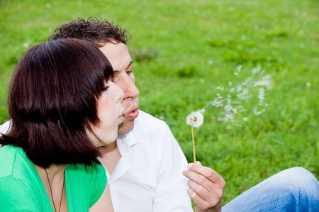 Young couple in a park with a blow flower (dandelion) Stock Photo - 3714640
