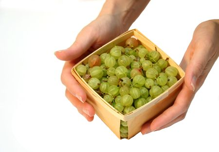 gooseberries: gooseberries basket