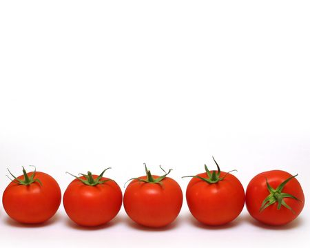 tomatoes row
