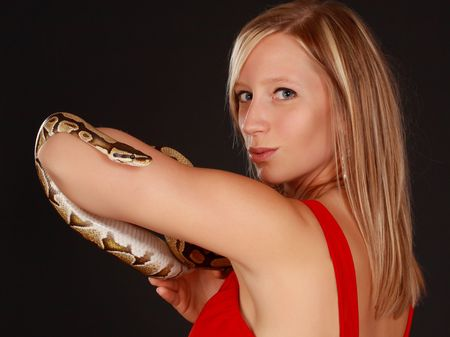 royals: cute blond woman holding a Royal Python snake