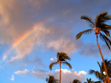 Luau Rainbow photo