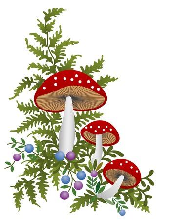 a toadstool: Red mushrooms Illustration