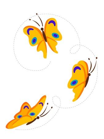 arthropod: Flying butterflies
