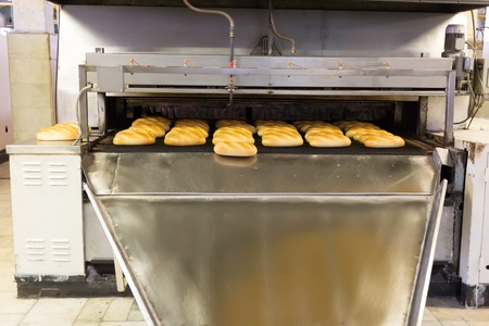 Baked Breads on production line at bakery photo