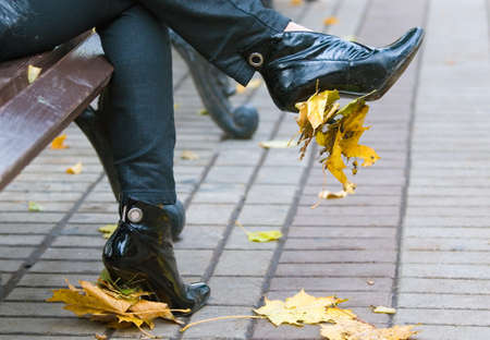 heelpiece: Autumn leaves not heels of female footwear Stock Photo