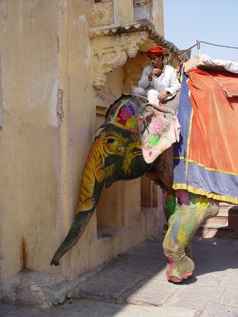 amber fort: Elephants from Jaipur - Amber fort