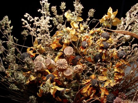 largely: The dried bouquet