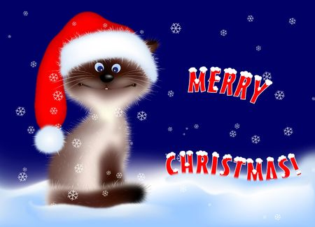 Cat in Santa Hat. Digital Illustration � partir de z�ro. Filet de d�grad�, brosses, P�toncle Tools  Banque d'images