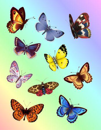 Colorful Butterflies. Digital illustration. Gradient Mesh. Filters. Stock Photo