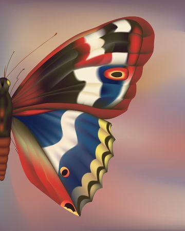 Zoom-Wing en papillon. Hand-tracing illustration de num�risation. Gradient mesh.