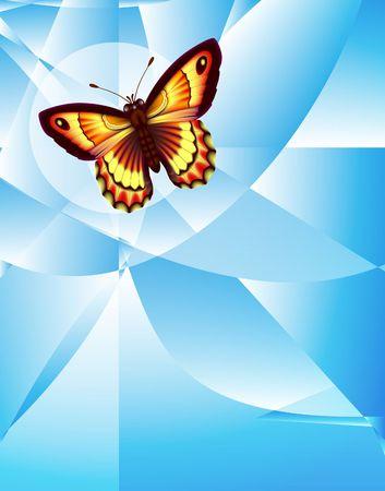 Butterfly & Net. Digital illustration. Gradient, gradient mesh. Clipping Path.