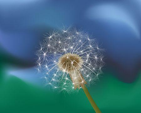 Dandelion on Green-blue. Digital illustration from scan