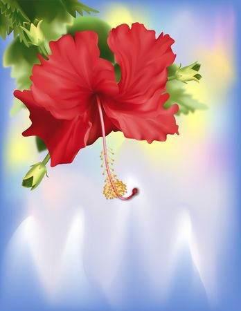 Blooming hibiscus on cold icy background. Digital Illustration. All Gradient Mesh. Contains precise clipping path.