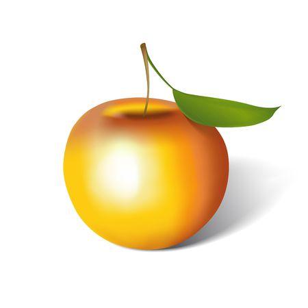 Apple sur blanc. Digital illustration. Filet de d�grad�. Contient le chemin de d�tourage.