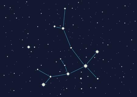 vector  illustration of constellation  Vector
