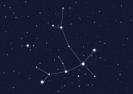 vector  illustration of constellation  Vector