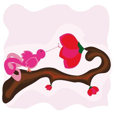 sip: vector de dibujos animados con antecedentes hada beber el n�ctar de aves  Vectores