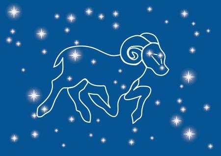 zodiacal: vector illustration of zodiacal symbol  Illustration