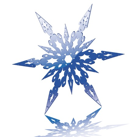 Glossy snowflake. Vector illustration. You can find similar images in my gallery! Stock Vector - 3674405