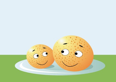 two oranges on the plate Vector