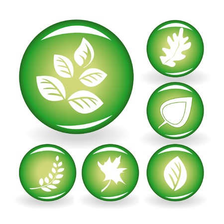 Set of web icons with leaves. Vector illustration. Vector