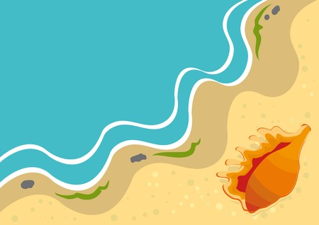 Summer background with shell on a beach. Vector illustration.  Vector