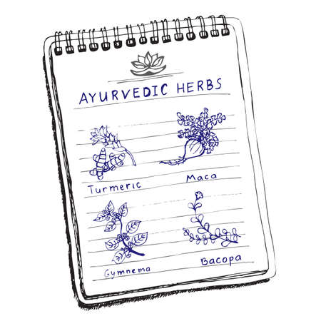 Handdrawn set - Ayurvedic Herbs Vector