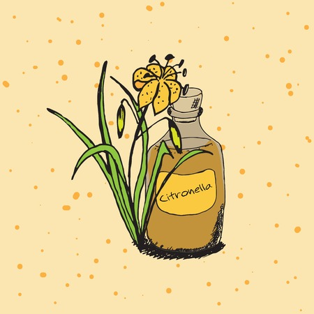 Handdrawn Illustration- Health and Nature Vector